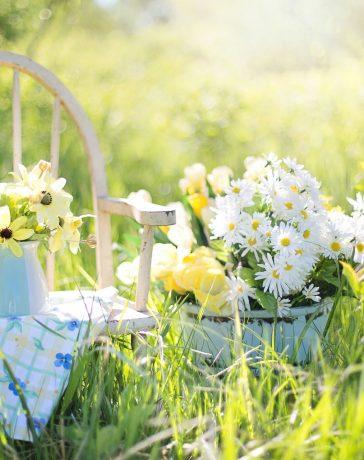 Garden Tips