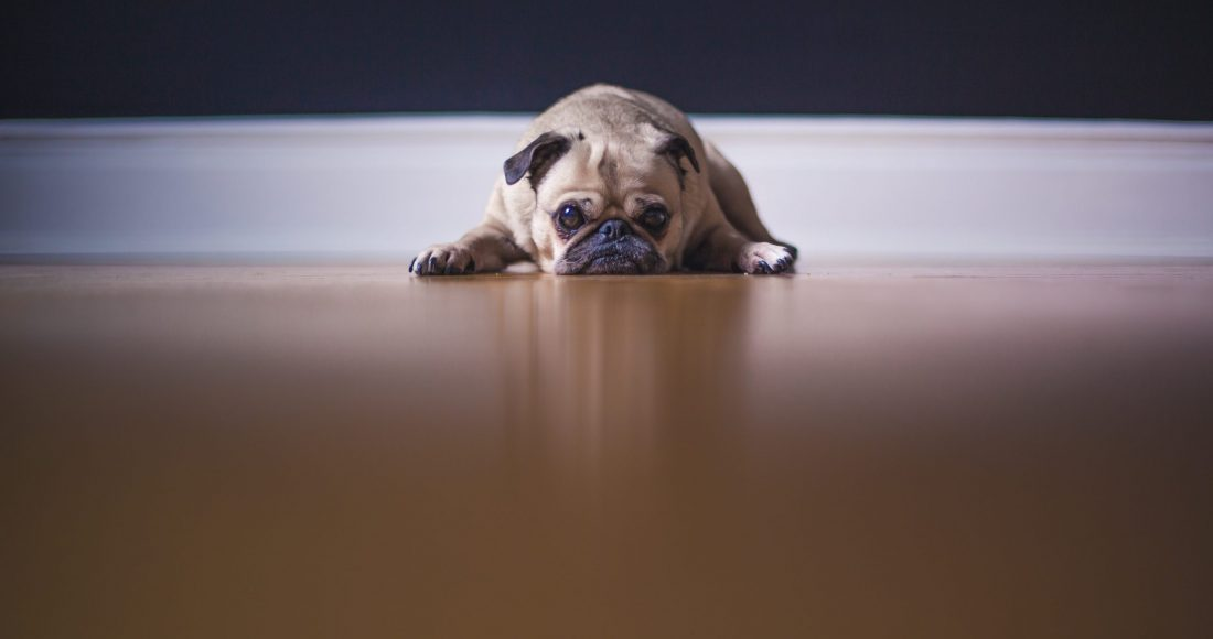 The most resistant flooring