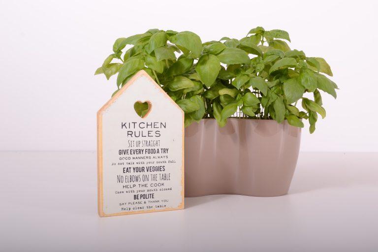 Growing An Indoor Herb Garden At Home