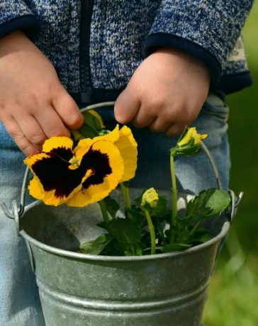 Introducing young children to gardening